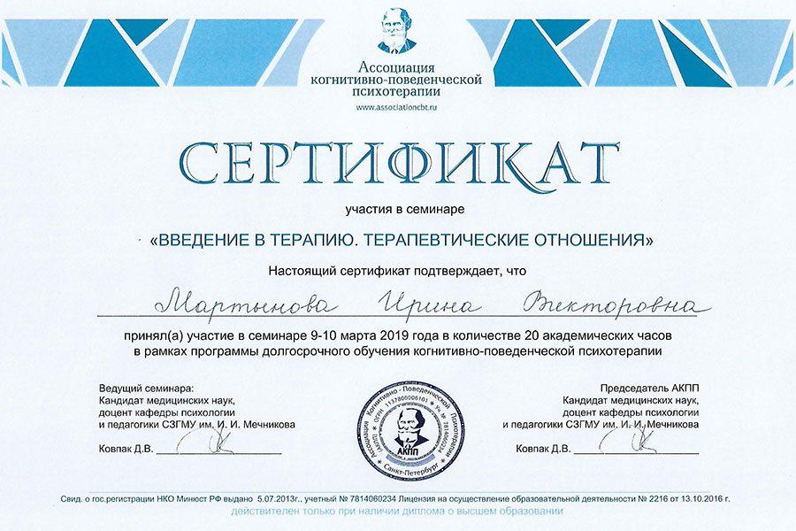 <h3>Сертификат введение в терапию</h3>
